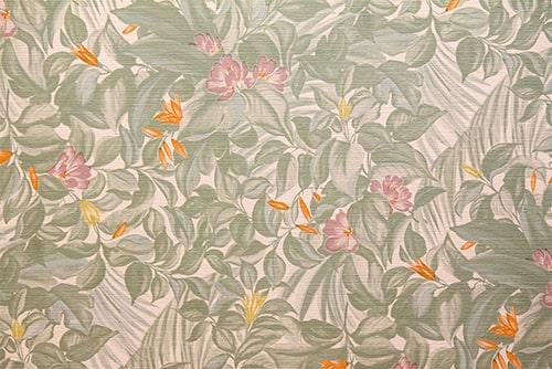 壁紙のイメージ